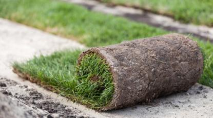 5 Reasons to Install Artificial Grass