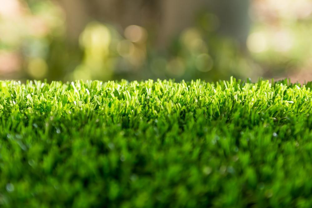 sunshine-artificial-grass
