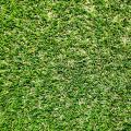 Prestige Lawn image