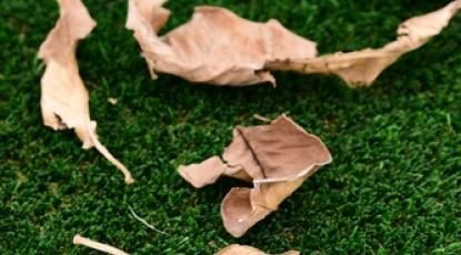 How To Look After Your Artificial Lawn