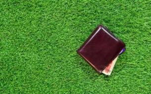 Artificial Grass Installation Costs