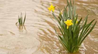 Artificial Grass Drainage Systems: How They Work and How They Help Waterlogged Gardens