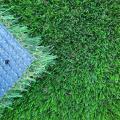 Active Lawn image