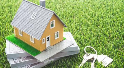Artificial Grass to Suit Your Budget