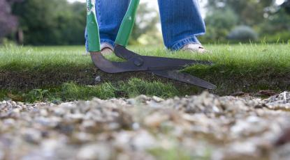 Low Maintenance Gardens for Disabled Gardeners